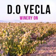 un vino de Yecla