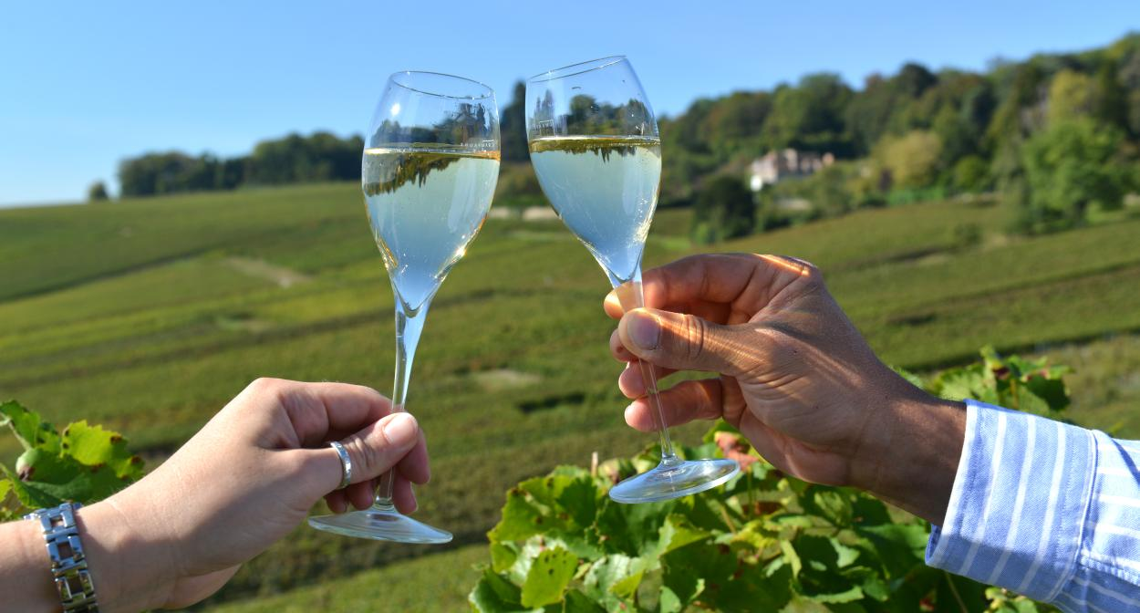Catar vinos mientras viajas champagne francia