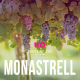uva monastrell